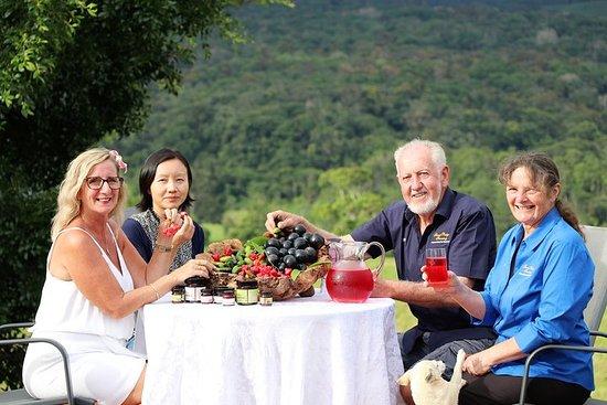 Boutique Atherton Tablelands Tour di degustazione di vini e piccoli