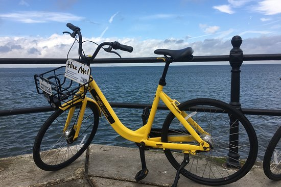 Yellow Bikes & Scooter Hire