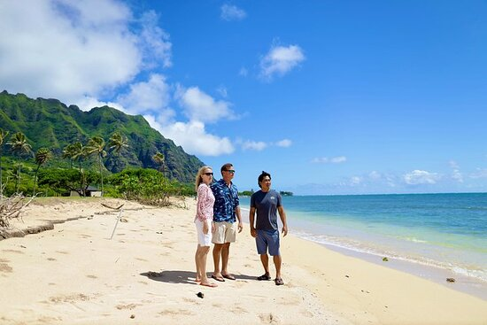 オアフ島サファリ ジープ サイクル アイランドツアー