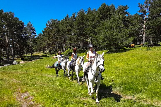 ‪Horse Riding in Madrid - Guadarrama‬