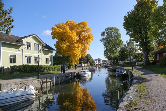 Autumn by Trosa stream