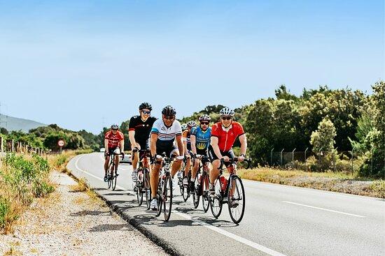 Clips Mallorca Bikes | Bike rental