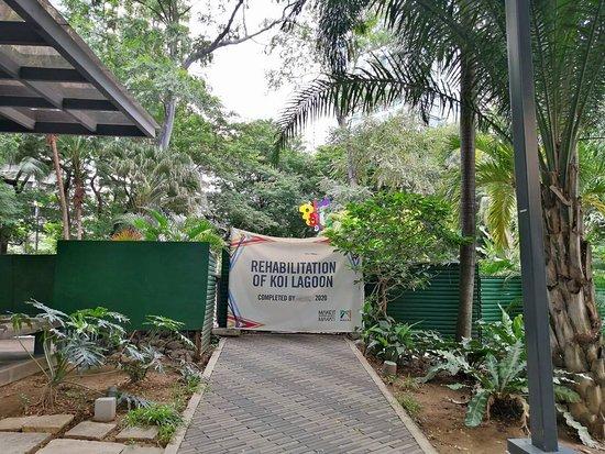 Crane & Turtle Garden
