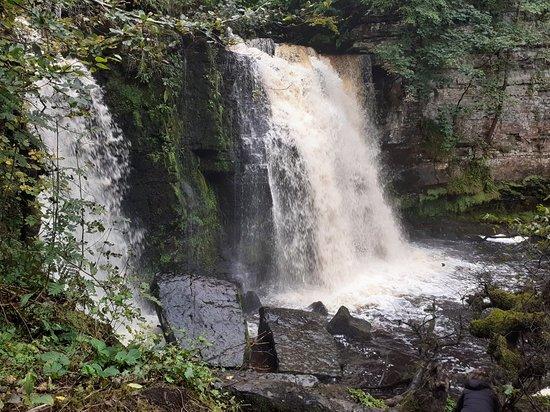 Lynn Falls
