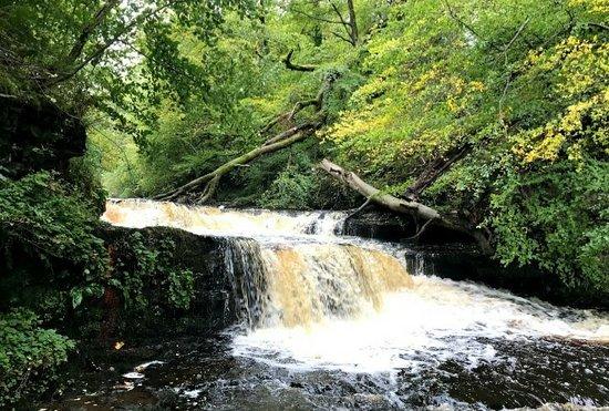 Dalry, UK: Lynn Falls