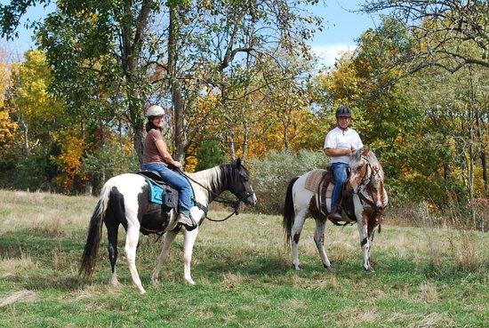 Bedford County Horseplay. LLC