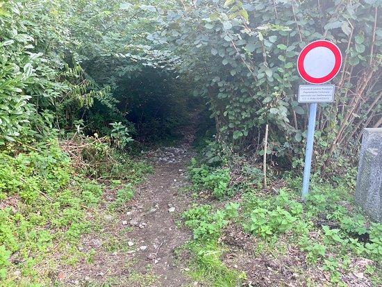 Sentiero per la Torbiera