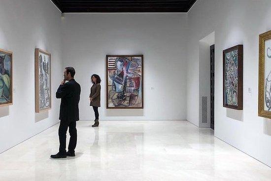 Visita guiada privada al museo...