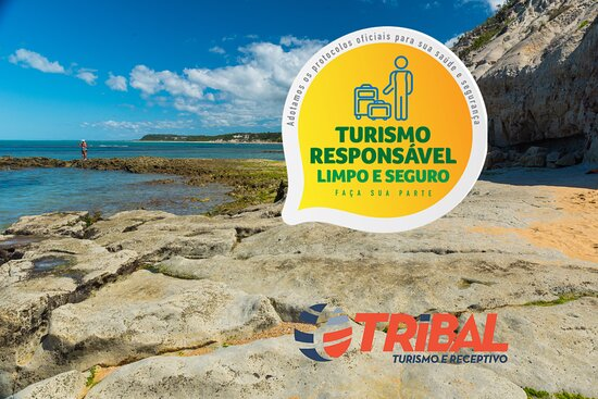 Tribal Turismo