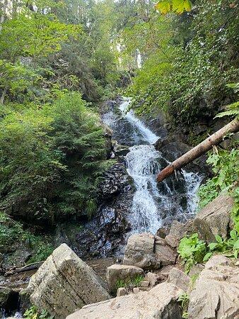 Arieseni, Romênia: Hike to Patahaitesti Waterfall