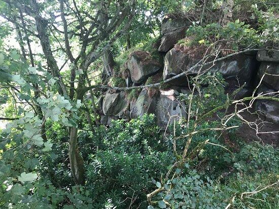 Birchover, UK: Rowter rocks