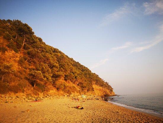 Spiaggia di Ogliastro Marina