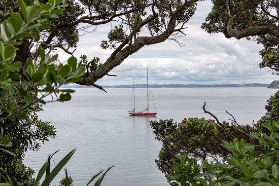 NZ Sailing Trust