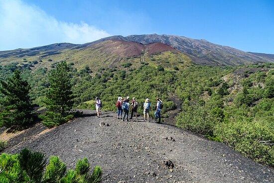 Trekking Etna, cuevas y cráteres