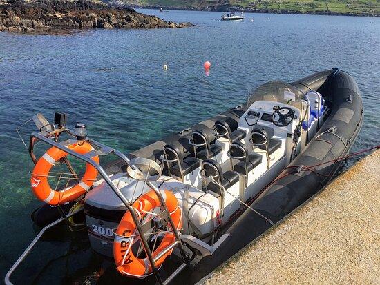 Dursey Boat Trips