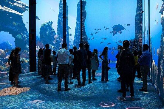 Oceanographic Museum of Monaco and...