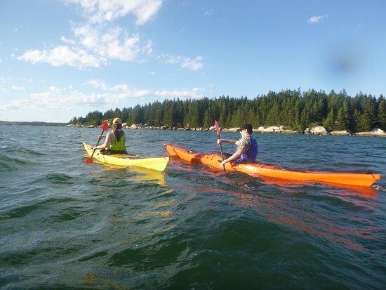 Upwest & Downeast Sea Kayaking: Gorgeous coast line views!