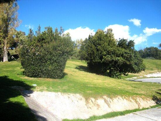 Eleftherios Park