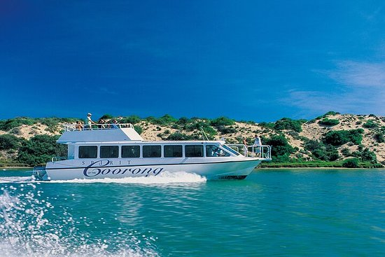 Coorong 3.5-Hour Discovery Cruise
