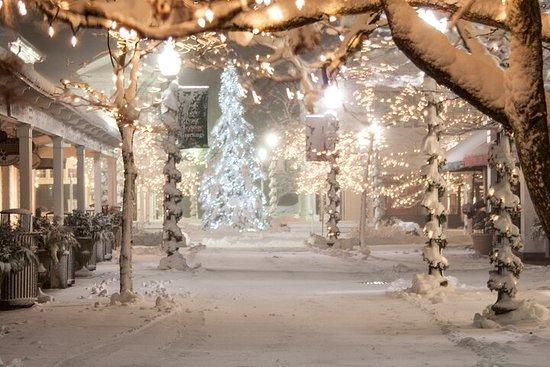 Visite photographique nocturne des lumières de Noël