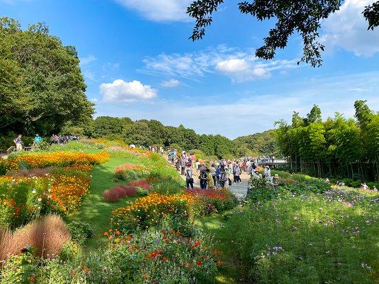 Satoyama Garden