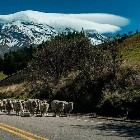 Chimborazo Province 사진