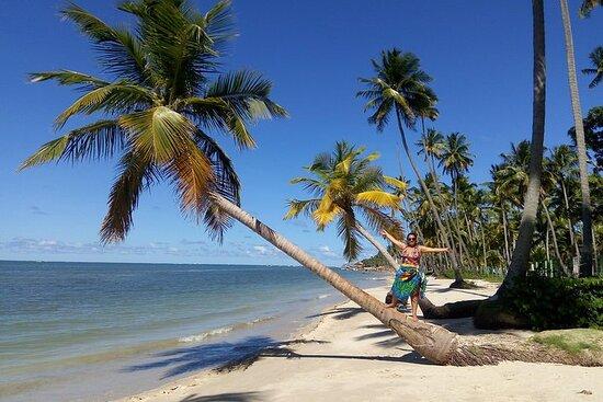 Tour de un día a Praia dos Carneiros...