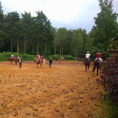 Horse-Riding Club Zapovedny