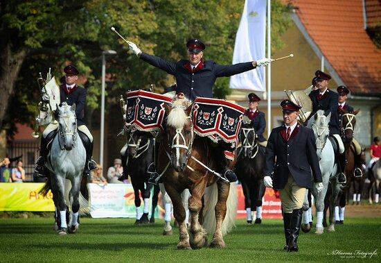 Neustadt (Dosse), Deutschland: Veranstaltungen: Ob zum Fohlenfrühling, zur Weihnachtsgala oder zur großen Hengstparade - die Neustädter Pferde verzaubern,
