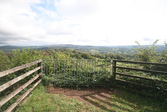 Llandybie, UK: Viewpoint above the reserve