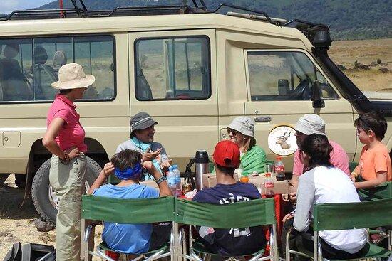 Global Vacanza Tours and Safaris