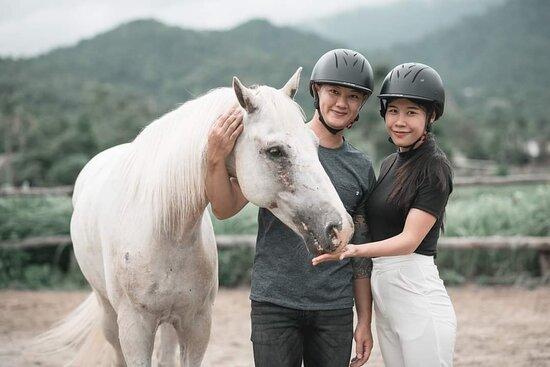 Baan Pong, ไทย: Pong Horse Park