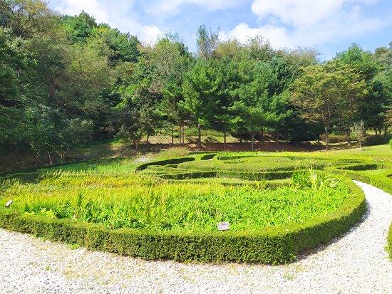 Gyeongsangbuk-do Forest Science Museum
