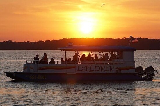 Dolphin and Nature Sunset Cruise from...