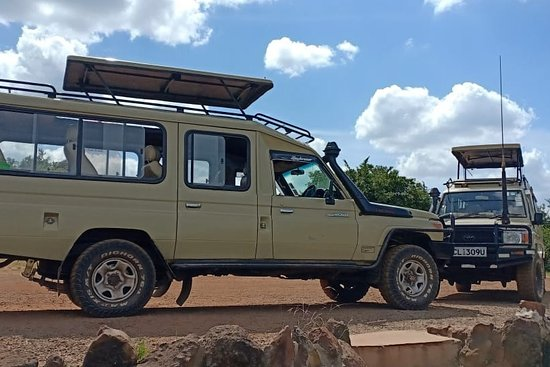 Avadan Safaris Ltd