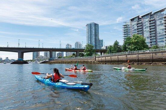 Creekside Kayaks at Dragon Boat BC