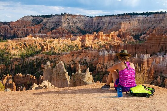 Tour privado de 7 días a Bryce, Yellowstone y Grand Tetons desde Las...