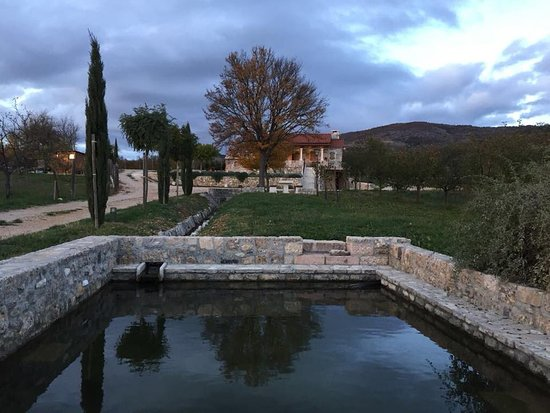 Drnis, Hrvatska: Front View of our Restaurant from the lower vineyard perspective.