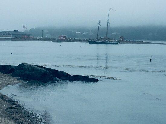 Orrs Island, ME: Foggy morning outside the Salt Cove Cafe.