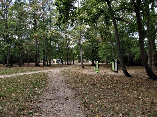 Parc Barrachin