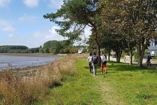 Les Archi Kurieux - Pont-Croix