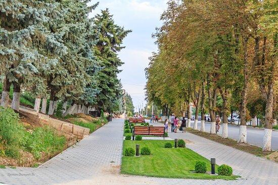 Riscani Moldova (TVV)
