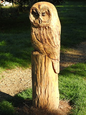 Wooden owls on the path from the car park to river bank