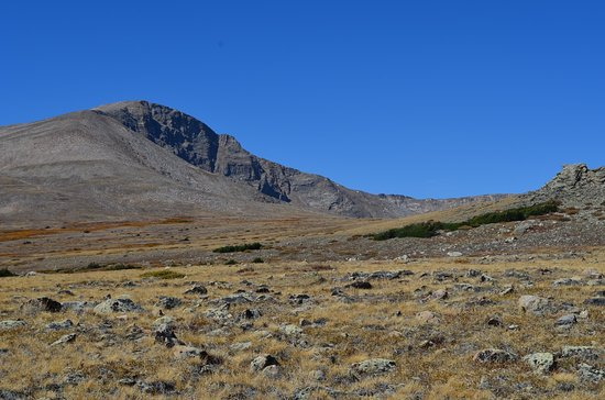 """Rollinsville, CO: """"bold"""" area, about 12K feet above sea level"""