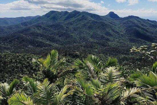 Selva tropical El Yunque, tobogán de...