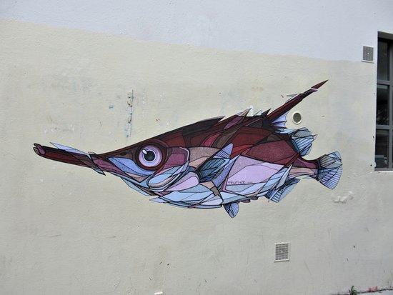 "Fresque ""macroramphosus Scolopax"""