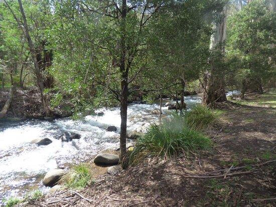 Mirimbah, Austrália: The stream