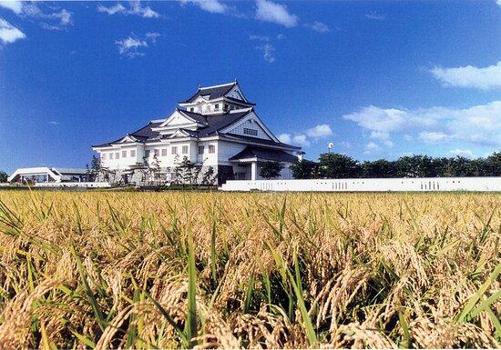 Watari Municipal Local Museum
