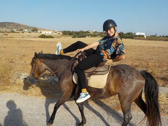 Safe horses