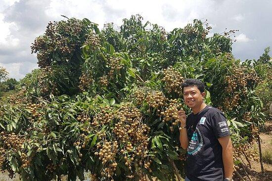 湄公河水上市场-水果园穆斯林之旅1天